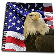 3dRose Bald Eagle & American flag - Memory Book 12 by 12-Inch (db_21650_2)
