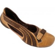 Action Synergy Signora SHI031 Corporate Casuals For Women(Natural)