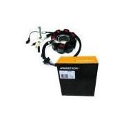 Estator Honda Xr/ Nx/ Cbx-200/ Cbx-150 - Magnetron