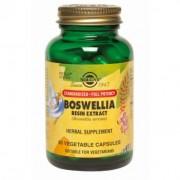 **Boswellia (Resin Extract) - 60 vcaps