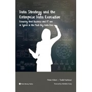 Data Strategy and the Enterprise Data Executive: Ensuring That Business and It Are in Synch in the Post-Big Data Era, Paperback/Peter Aiken