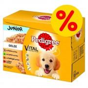 Pedigree Fai scorta! Pedigree Junior Buste - 48 x 100 g in Gelee - prezzo top!