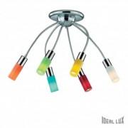 Lustra Ecoflex PL6 Color
