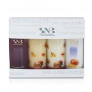 Кутийка с продукти SNB Манго