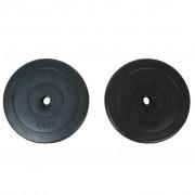 vidaXL Discuri greutate ganteră 2x10 kg