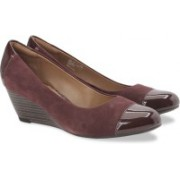 Clarks Brielle Chanel Burgundy Combi Slip On shoes For Women(Maroon)
