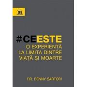 Ce este o experienta la limita dintre viata si moarte/Penny Sartori