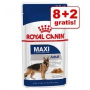 8 + 2 gratis! 10 x 140 g Royal Canin Maxi / Medium Hondenvoer - Maxi Adult