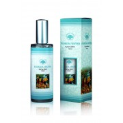Green Tree Candle Compagny Green Tree Room Spray Florida Water (100 ml)