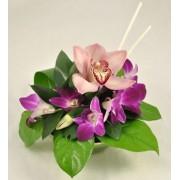 Aranjament cu orhidee dendrobium si cymbidium