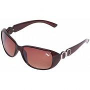 HH gaga007brown Brown Oval Sunglasses