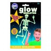 Schelet uman fosforescent The Original Glowstars Company B8007 B39011071