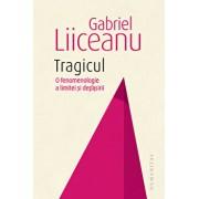 Tragicul. O fenomenologie a limitei si depasirii/Gabriel Liiceanu