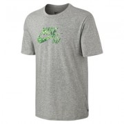 Nike SB Dri-FIT 360 Fern Fill Men's T-Shirt