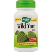 Wild Yam 100 capsule