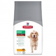 Hill's Adult Large Breed Perfect Weight con pollo - Pack % - 2 x 12 kg