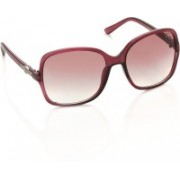 Gio Collection Over-sized Sunglasses(Violet)
