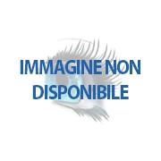 Kingston SO DDR3 PC1600 4GB CL11 Kingston RICONDIZIONATA - KVR16LS11/4 (K95771_RIC)