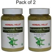 Herbal Hills Bhumi Amalaki or Bhumi Amla (Phyllanthus niruri) Powder 100gms - Pack of 3 - Supports Liver and Kidneys