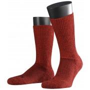 Falke Sokken Walkie Trekking Socks Scarlet / male