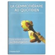 Herbes et Traditions La Gemmothérapie au quotidien - Christian Eloy