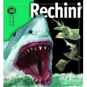 Rechinii