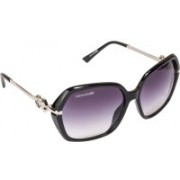 Danny Daze Over-sized Sunglasses(Black)