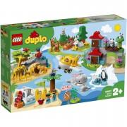 LEGO DUPLO: World Animals (10907)