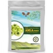 Saptraag Amla Powder 100 gm