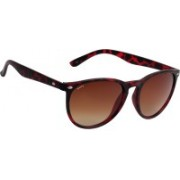 Fave Oval Sunglasses(Brown)