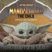 Danilo Star Wars The Child Calendar 2021 *English Version*
