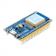 ESP-32 Dev Kit C