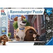 Ravensburger puzzle - pets - 100 pz xxl