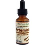 Artemisia Annua 30 ml