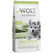 2x12kg Little Wolf of Wilderness Junior Green Fields com cordeiro ração