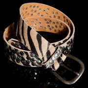 Sexy Belt with Studs and Zebra Look