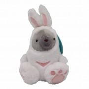Duma Pluche Duma in konijnenpak - 17 cm