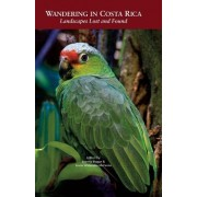 Wandering in Costa Rica: Landscapes Lost and Found
