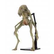 NECA Aliens - 7 Scale Action Figure - Deluxe Alien Resurrection Newborn