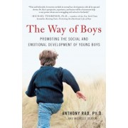 The Way of Boys: Promoting the Social and Emotional Development of Young Boys, Paperback