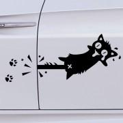 Pórul járt macska, autómatrica