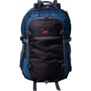 F Gear Olympus 46 L Laptop Backpack(Blue, Black)