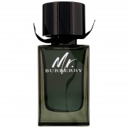 Burberry Mr. 100ml Eau de Parfum Spray