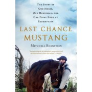 Last Chance Mustang: The Story of One Horse, One Horseman, and One Final Shot at Redemption, Paperback