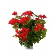 Bellatio flowers & plants Kunst nep plant geranium rood 40 cm - Kunstplanten