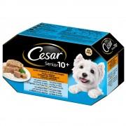Cesar Senior 10+ смесен пакет - 8 x 150 гр