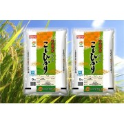 新米 「特別栽培米」天恵米むつみこしひかり 29年産・10kg(5kg×2)