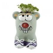 geschenkidee.ch Tierischer Blumentopf Maus