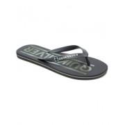Quiksilver Molokai Wordmark Sandalen