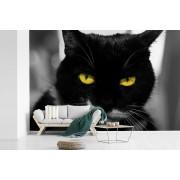 Fotobehang vinyl - Zwart-wit foto van de kop van een zwarte kat met gele ogen breedte 525 cm x hoogte 350 cm - Foto print op behang (in 7 formaten beschikbaar)